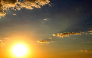 skin-in-the-sun-sunset-summer